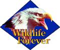 wildlife-forever